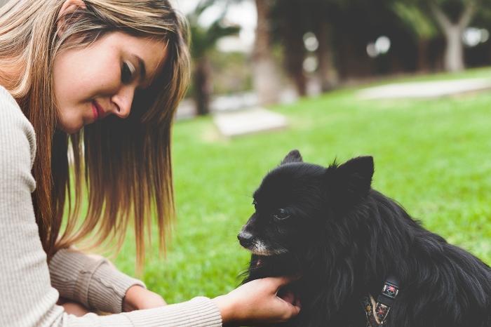 Sesión de fotos y Fotografía de mascotas con perro