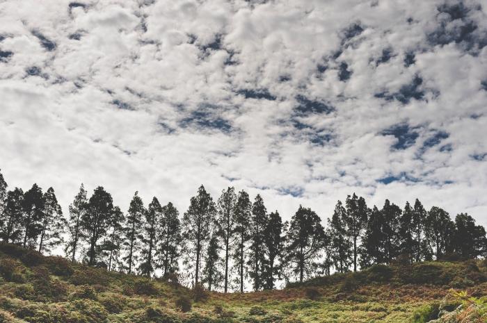 Fotografía de Boda rito hindú en Fontanales y Moya Posada Rural