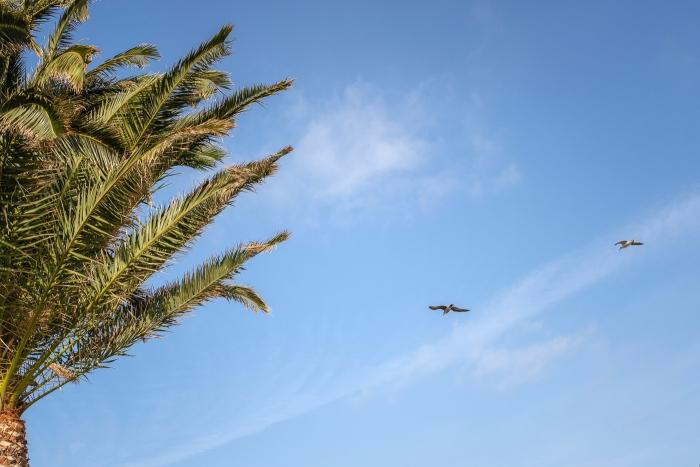 Fotografía de familia y sesión de fotos en hotel Robinson club jandía playa Fuerteventura
